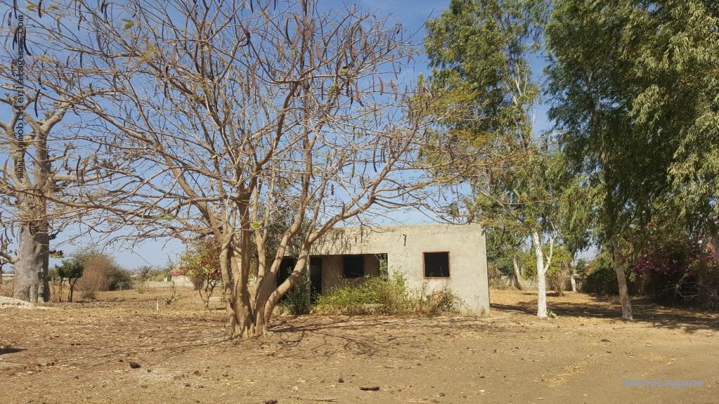 T2490 Terrain en vente à SINDIA chez www.immobilierlalagnue.com