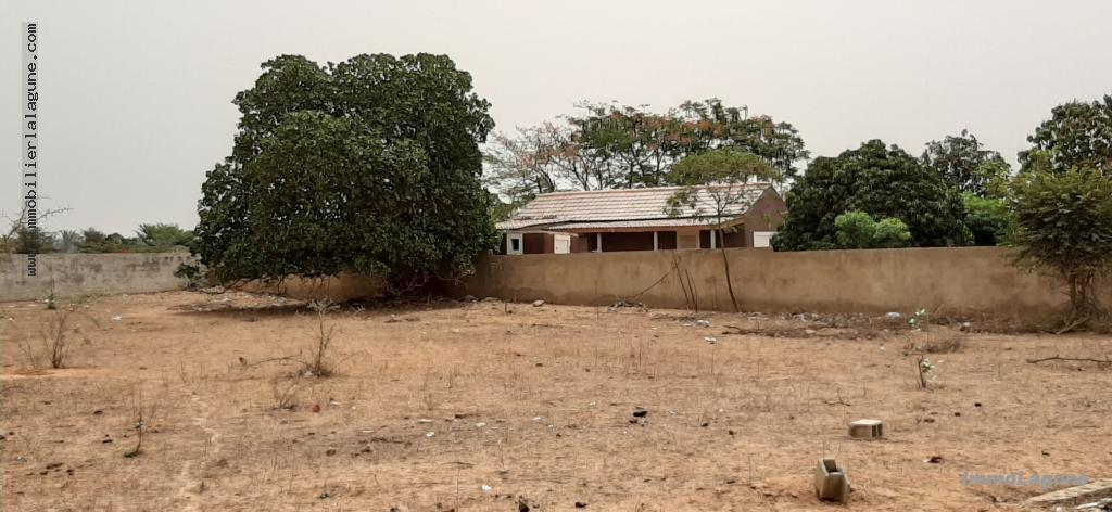 T2667 Terrain en vente à NGUERIGNE chez www.immobilierlalagnue.com
